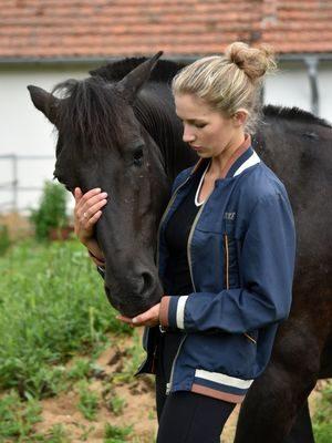 W_profil veterinar3-4